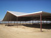 Standard Structures Dairy Cow Shade